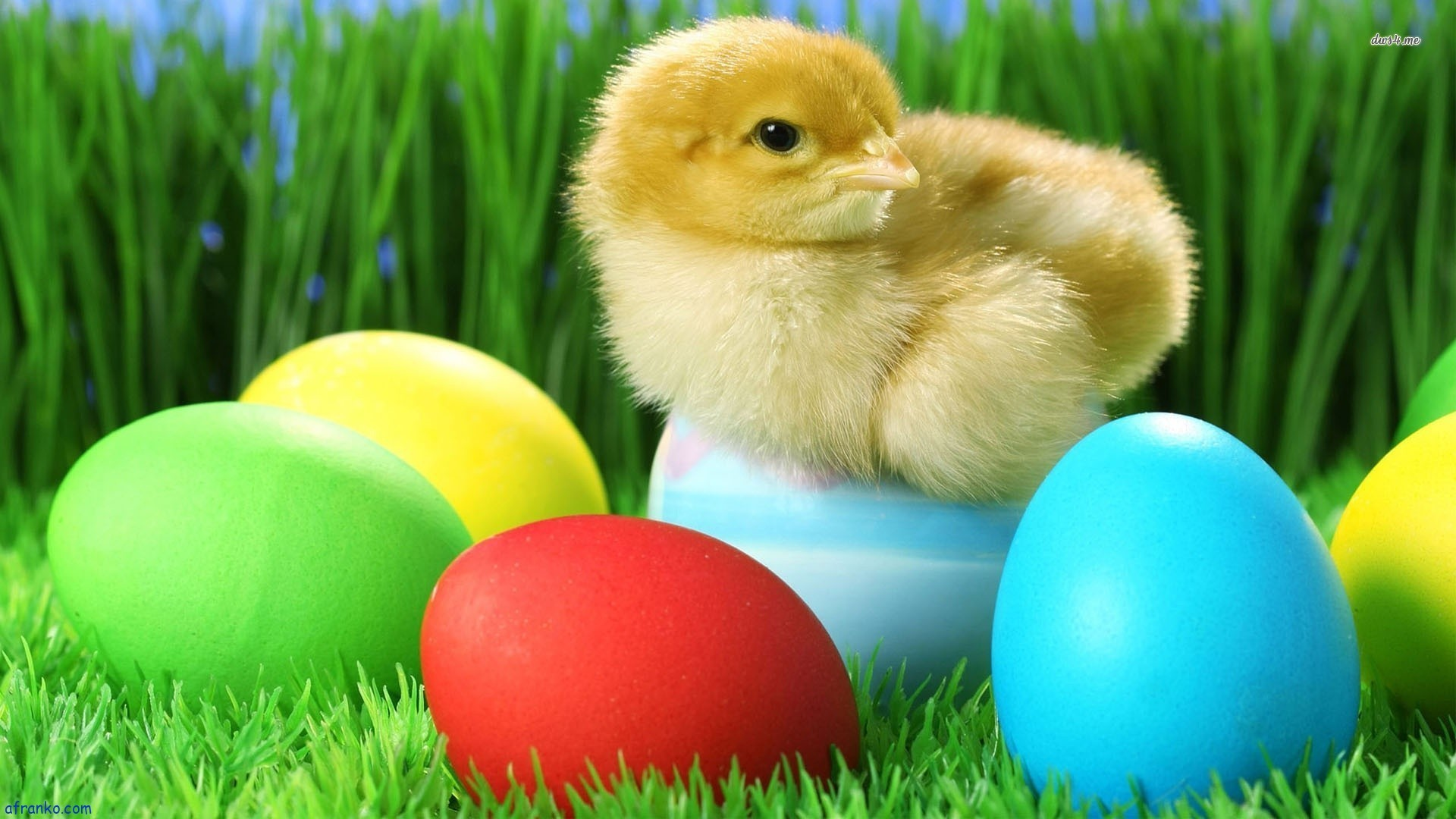 Special Easter Reservations Announcement!!
